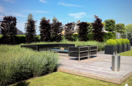 Moderne tuin in Lekkerkerk