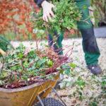Tuinonderhoud - onderhoud is behoud
