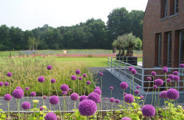 Grote tuin in Maarssen  door Ernst Baas Hoveniers