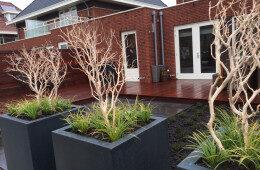 Middelgrote tuin in Reeuwijk door Ernst Baas Hoveniers