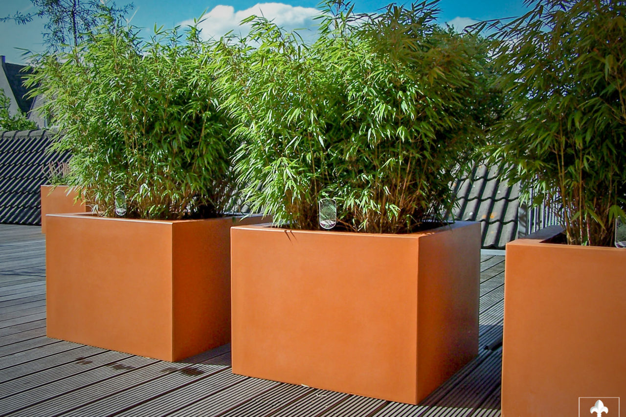 Dakterras in het centrum van gouda ernst baas hoveniersbedrijf in waddinxveen - Bamboe in bakken terras ...