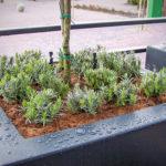 Beregening op daktuinen, kleine tuinen
